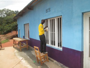 New windows at Ngoma production site