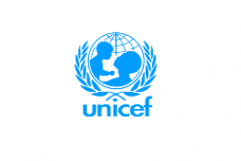 "<span style=""color: #8f8f8f;"">United Nations Children's Fund</span><br/>"